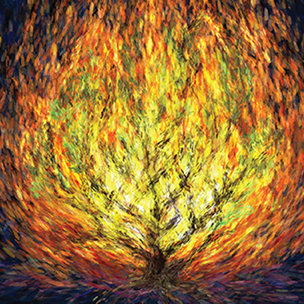Where was the burning bush located